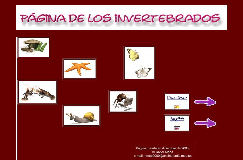 Animales Invertebrados | Tercer Ciclo Salesianos